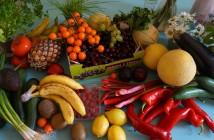 dieta dopo operazione colon