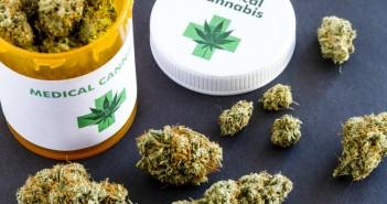 cannabis e terapia oncologica