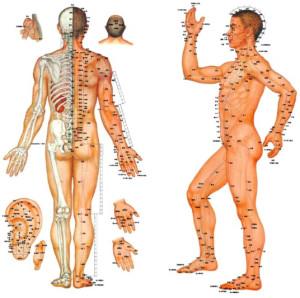 agopuntura e cancro