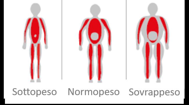 sarcopenia_diagnosi_fraparentesi_2