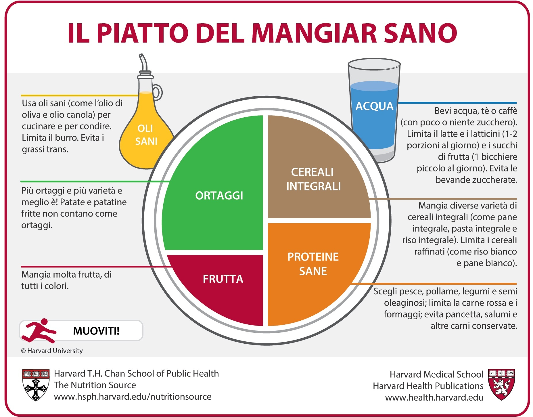 piramide alimnetare piatto del mangiare sano
